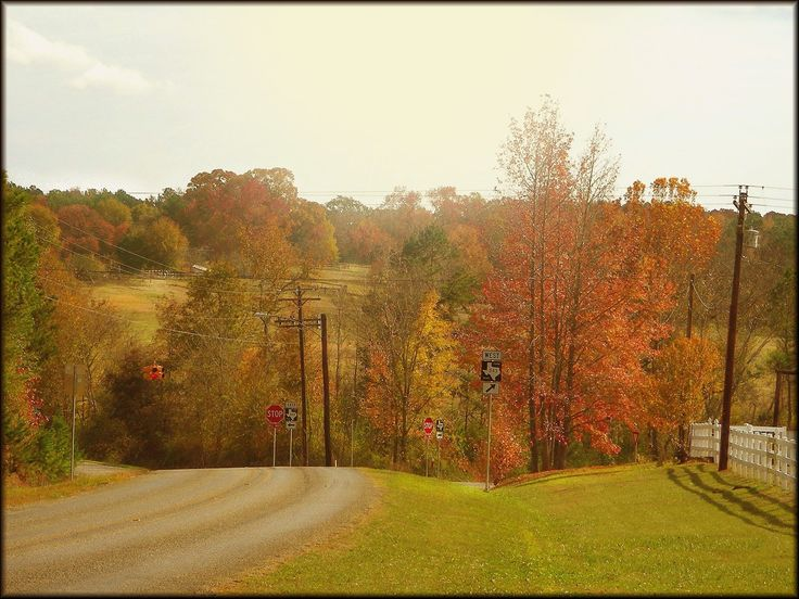 Autumn Landscape on Texas Farm Road 343 in Historic Nacogdoches