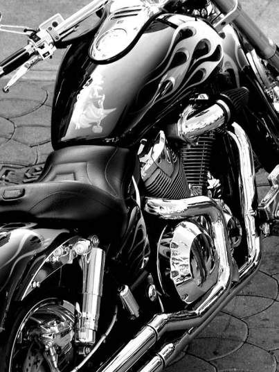 Harley Davidson: Black and White | I Love Harley Bikes Now that is something I could NEVER get tired of!