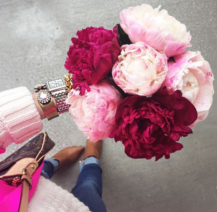 67 best F L O W E R S images on Pinterest | Flowers, Beautiful ...