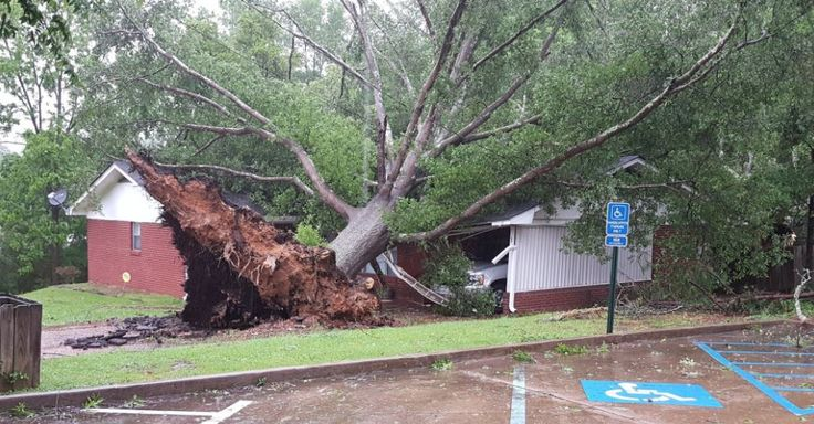Holmes and Yazoo County schools closed Monday due to storms - MSNewsNow.com - Jackson, MS