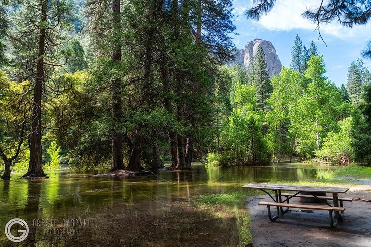 Yosemite National Park - Mariposa/Tuolumne - CA  USA - Orestegaspari.com - #yosemite #yosemitenps #yosemitenationalparkguide #yosemitenationalpark #nationalpark #yosemitenation #mariposa #california #California #usa #usatravel #travelmyusa #travel #usanationalpark #travelmyusa  #travelandleisure #fantastic_earth #earthpix #river #mountain #bestintravel #awesomeearth #nationaldestination #visittheusa #visitcalifornia