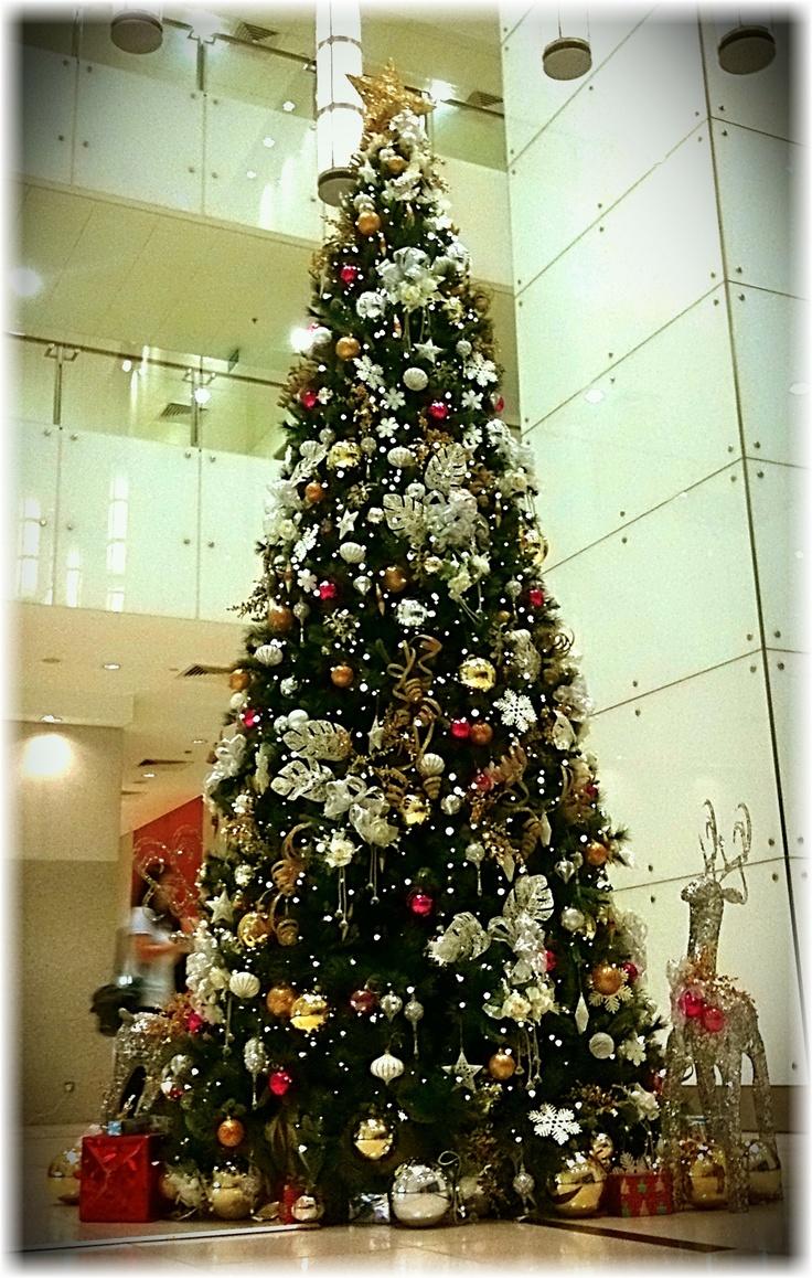 christmas is coming to the equator