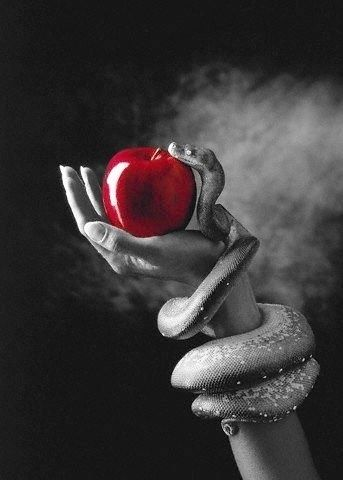 Red apple either as a prop or in the hand of the rich. Snake prop could also work in the photo