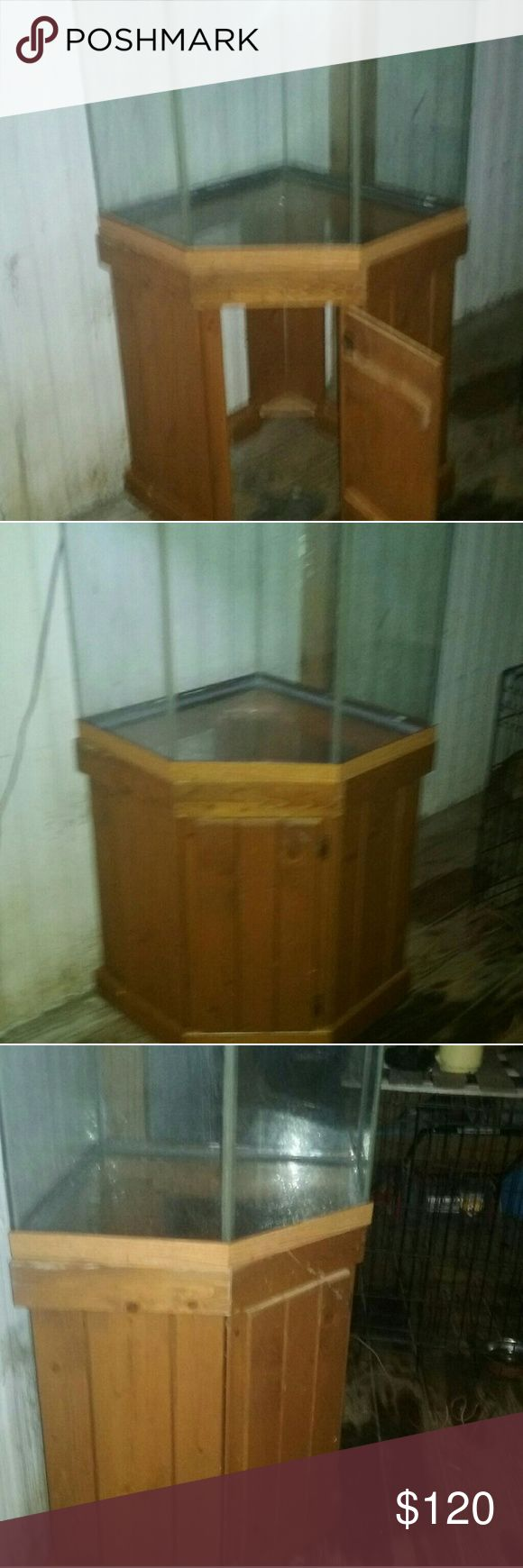 Best Fish tank with stand