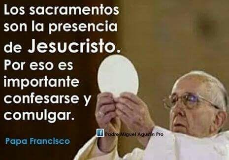 Mensaje Papa Francisco