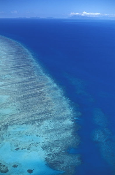 'Great Barrier Reef near Cairns Queensland Australia' by Christian Heeb