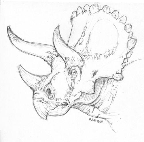 rah-bop:  Triceratops