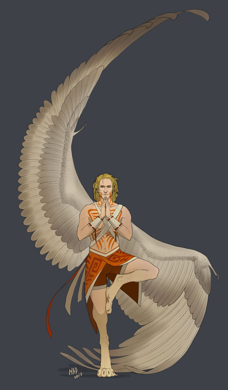 1039 best wings images on pinterest drawings mythical creatures