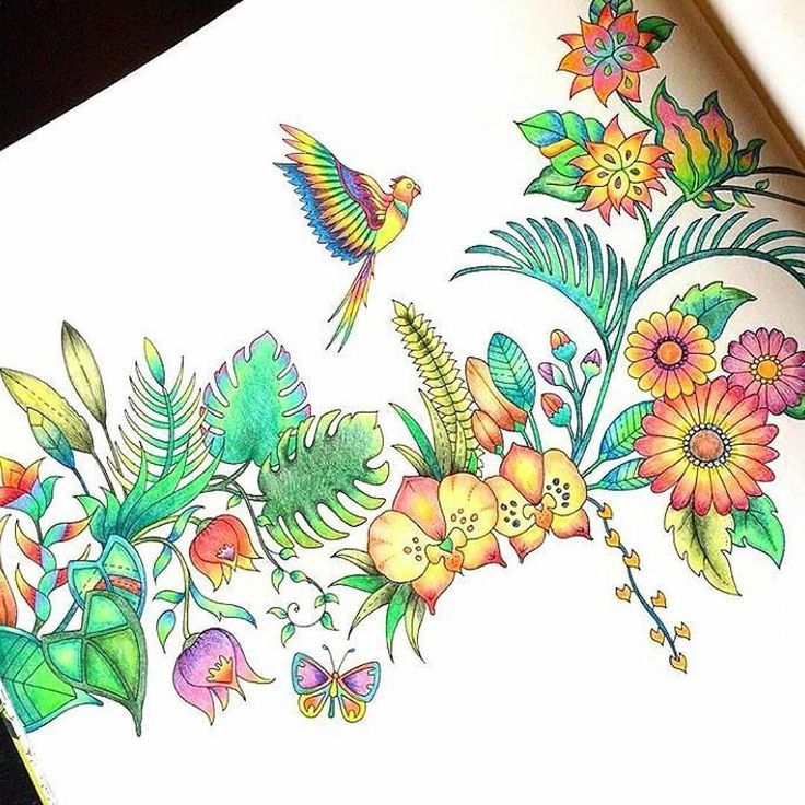 100 Best Sweet Colored Pencils Images On Pinterest