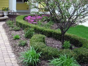 Cheap Front Yard Ideas 404 best front yard landscaping ideas images on pinterest
