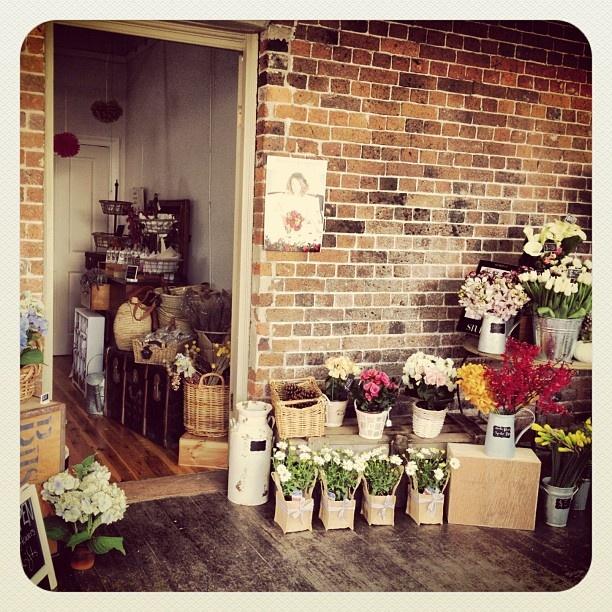 Merci Bouquet in Camden NSW, Australia http://www.mercibouquet.com.au/index.html