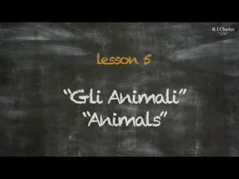Giochiamo in inglese insieme a Miss Charles. Nell'episodio 5 impariamo i nomi di altri due animali. http://www.bjcharles.it/