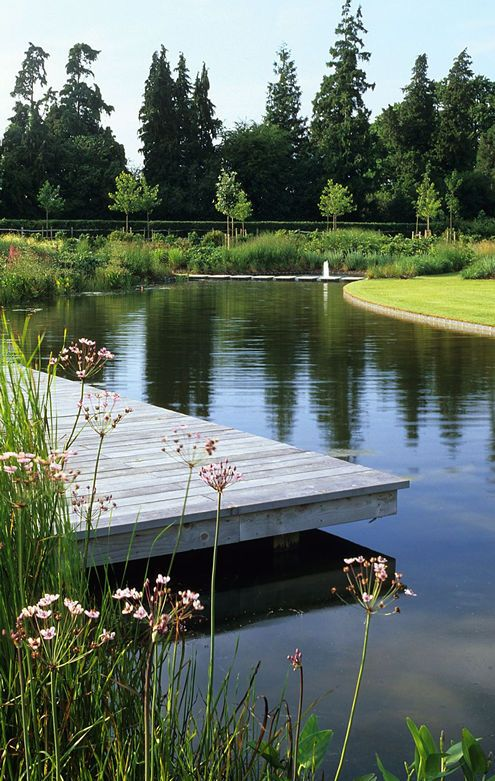 'Floating' Deck at curved pond in Hampshire Country garden by Acres Wild