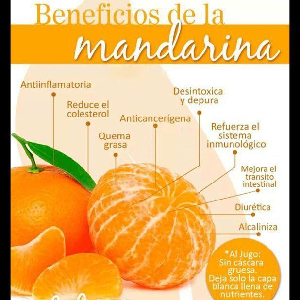 ¿Qué tal un delicioso y refrescante jugo de #Mandarina para hoy? Necesitarás: 1 mandarina, 1 taza de espinaca, 1 pepino grande, 1 zanahoria y 1 limón. A la licuadora y a disfrutar... Visita nuestra página web www.terra.net.co y llámanos al tel: (4) 3860181 Imagen vía habitos.mx