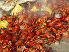 Best New Orleans Food and Drink : Food : Travel Channel
