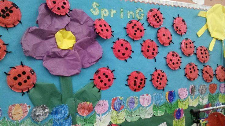 Paper plate ladybug bulletin board from my co-workers room. Students practiced symmetry with the spots.
