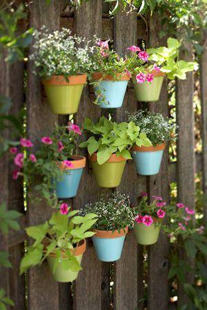 Backyard flower pots.