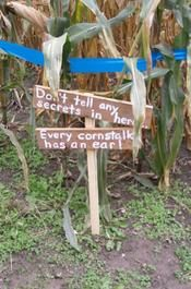 Frankenmuth Corn Maze in Frankenmuth, MI. So great!