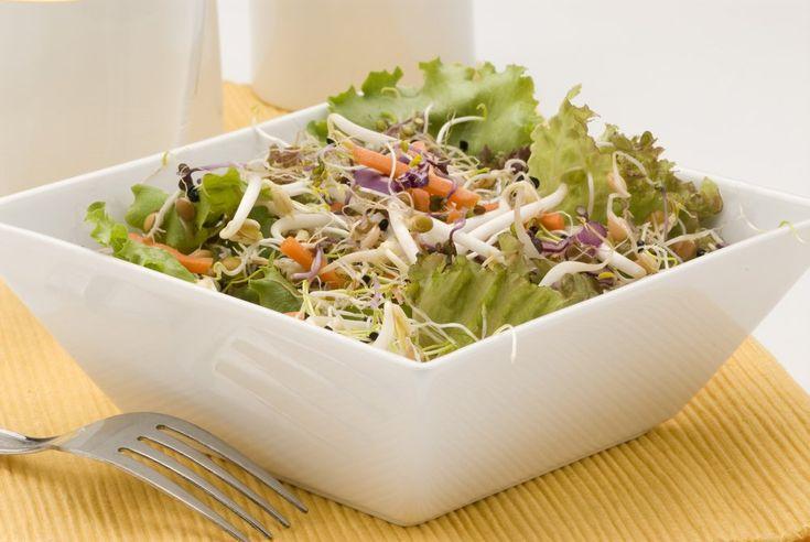 Ingredientes:  8 folhas de alface grandes 250 gramas de brotos de alfafa 4 talos de aipo picados 1 pepino grande em cubos 4 colheres de sopa de vinagre 4 colheres de sopa de semente de linhaça triturada. (continua no site)