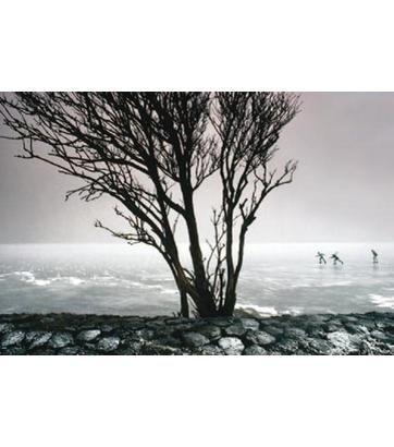 skaters (Dutch landscape) by Martin Kers