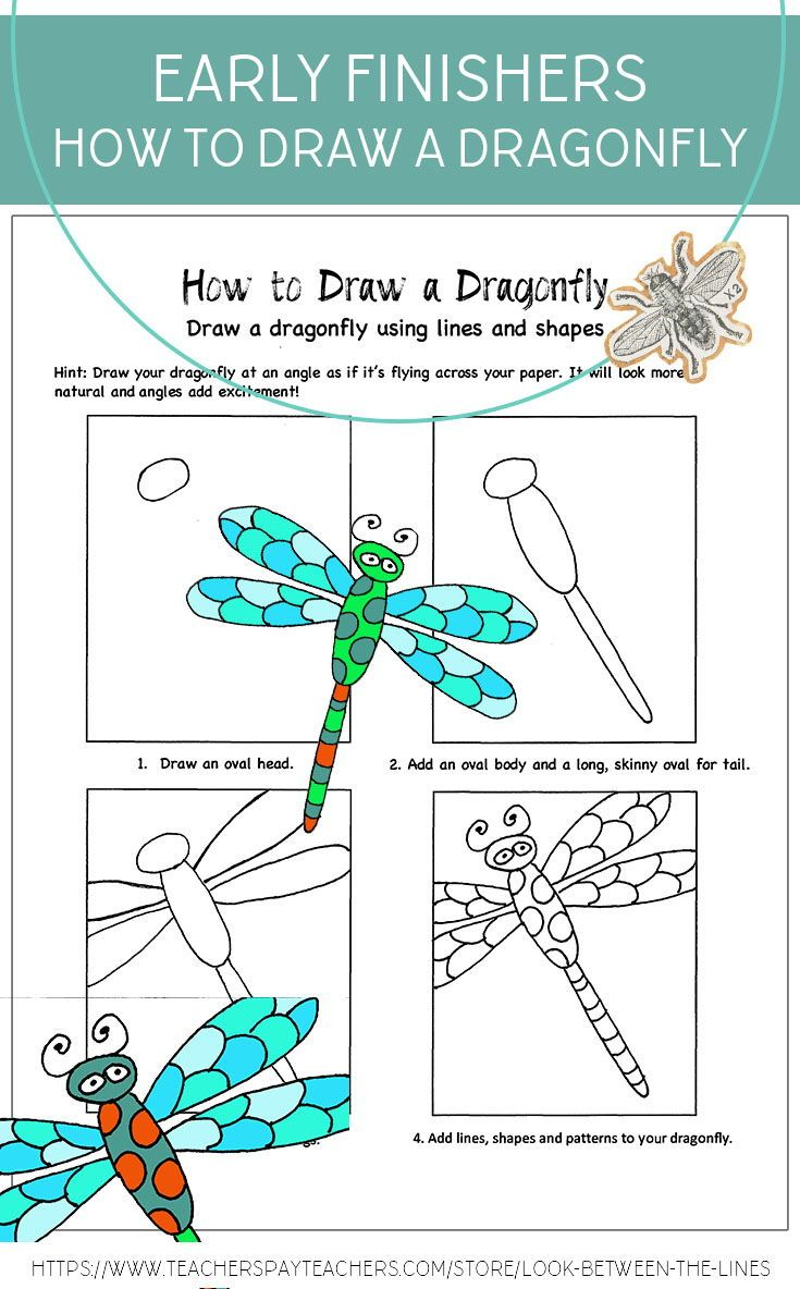 What Do You Do With Your Elementary Art Early Finishers This Dragonfly Handout It A Perfect Way To Engage Them Elementary Art Montessori Art Art Lesson Plans