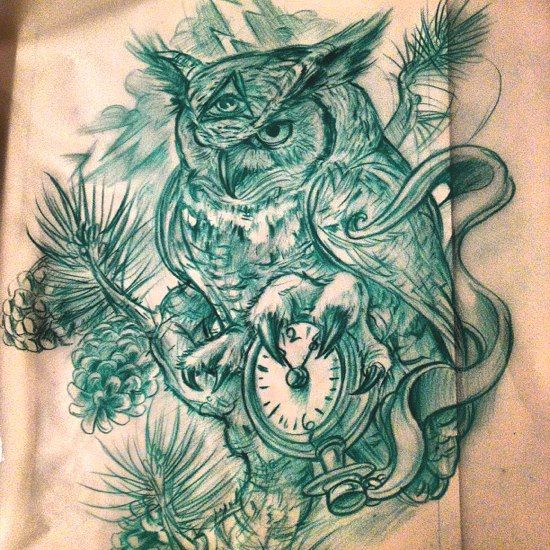 Owl sketch