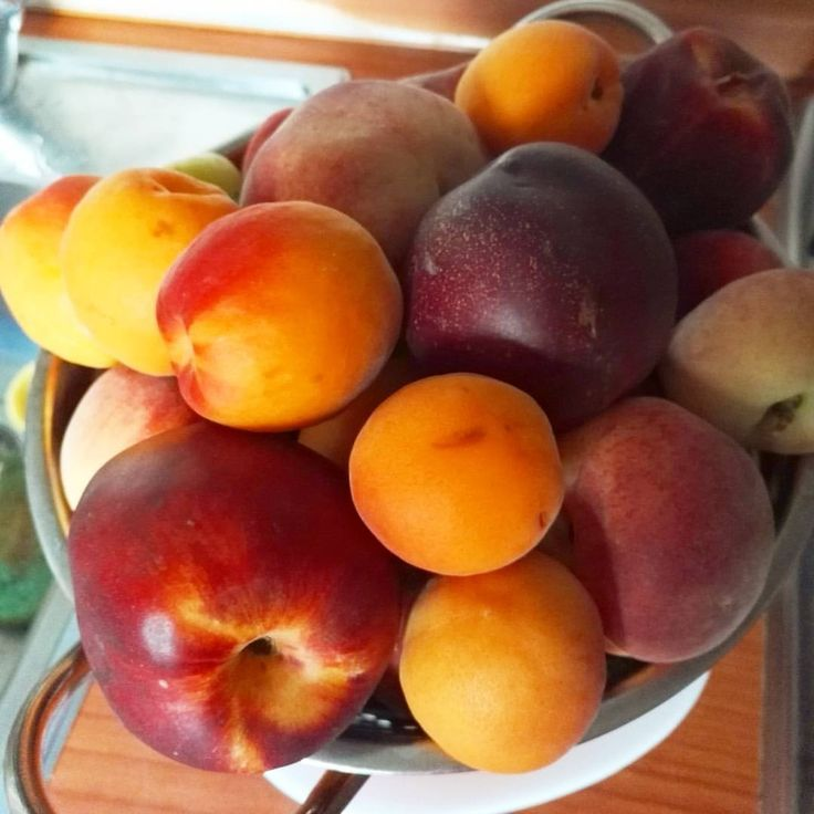 #Summer fruits are the best!!❤ I usually like #plums the most, but these #apricots tasted amazing! Come and try some! BOOK now at : http://aleph-casa-vacanze.webnode.it/contatto/ Follow us on FACEBOOK...