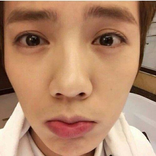 316 best EXO images on Pinterest Luhan exo, Luge and Wallpapers - express k amp uuml chen erfahrungen