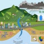 Mare inquinato: SMILE, il progetto UE contro i rifiuti