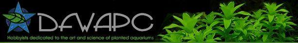 DFW Aquatic Plant Club Articles-- Beginner Basics: Carbon Dioxide