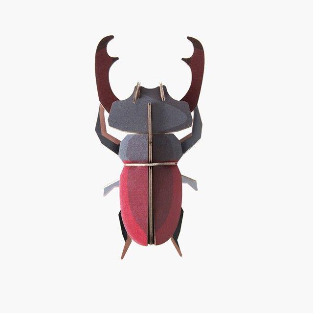 <p>Insecte Lucane cerf volant 3D à construire, vendu à plat, à monter soi même pour des heures de jeux, design Studio Roof. On aime le côté ludique et très décoratif de ce joyeux insecte en carton, à compléter avec le reste de la série !</p>