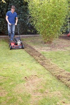 Rasenpflege Alles Zum Thema Mahen Dungen Saen Und Vertikutieren Vertikutieren Rasenpflege Krautergarten Palette