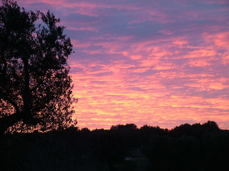 #MyPugliaExperience in un tramonto suggestivo della Valle d'Itria con @SpazzaventoBeB