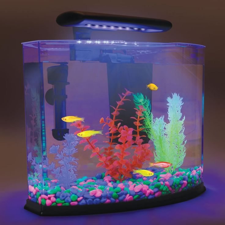 Aquarium that uses blue light and specialty plants and for Fish tank pebbles