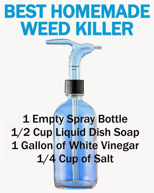 Ways to kill weeds using household ingredients: diy Recipe: 1 gallon white vinegar, 1/4 cup salt, 1/2...