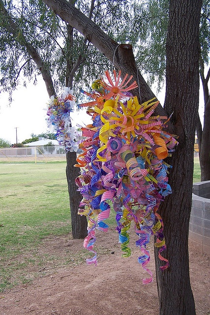 chihuly sculptures (recycled water, soda bottles, plastic sacks, chicken wire)