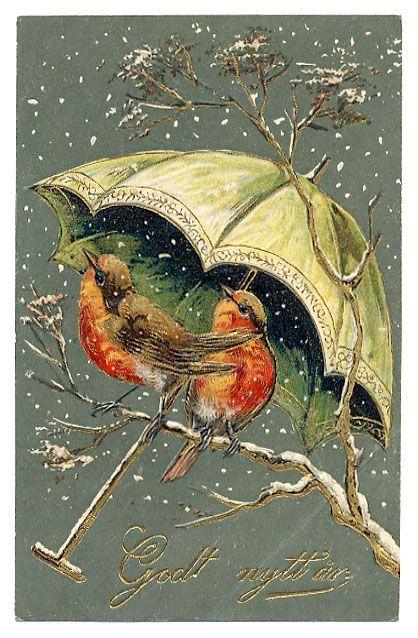 Иконками, ретро открытки с птицами