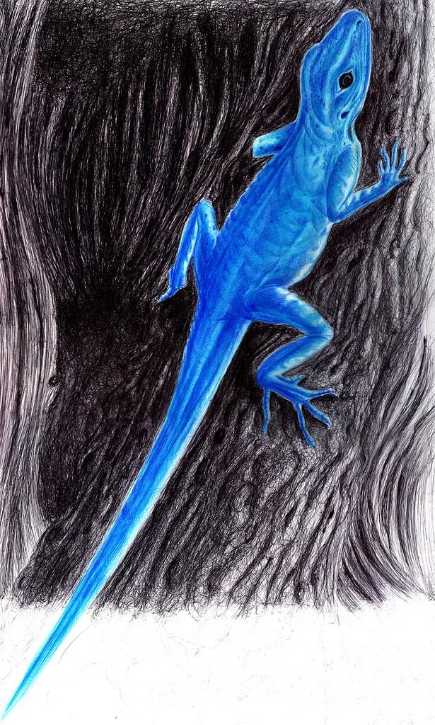 Color Pens... Anolis gorgonae... By R2frito