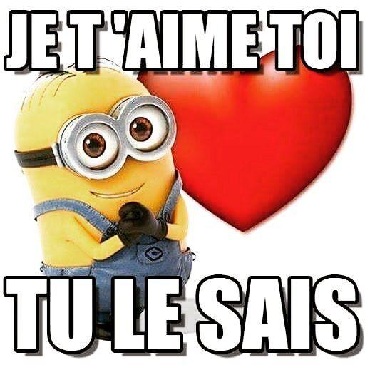 363 best les minions images on pinterest hilarious quotes minion stuff and minions - Minion amoureux ...