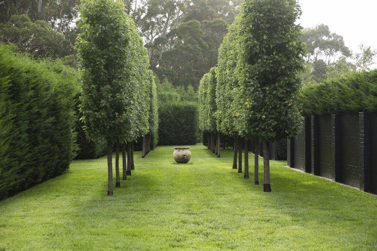 Peter Fudge Landscape Design