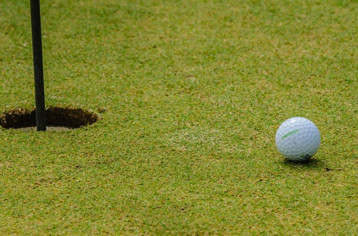 Let go of the last hole & #focus like a #golf pro - #Muse: the brain sensing headband. #ImproveyourGame #PaulDewland #CoreGolfAcademy #GolfTips #FocusLikeAPro #Golfing #GolfPro #GolfCoach #Calm