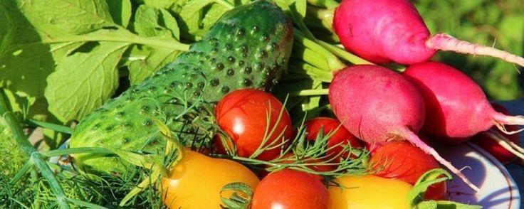 Czy warto spożywać surowe warzywa? Poznaj zasady diety RAW!
