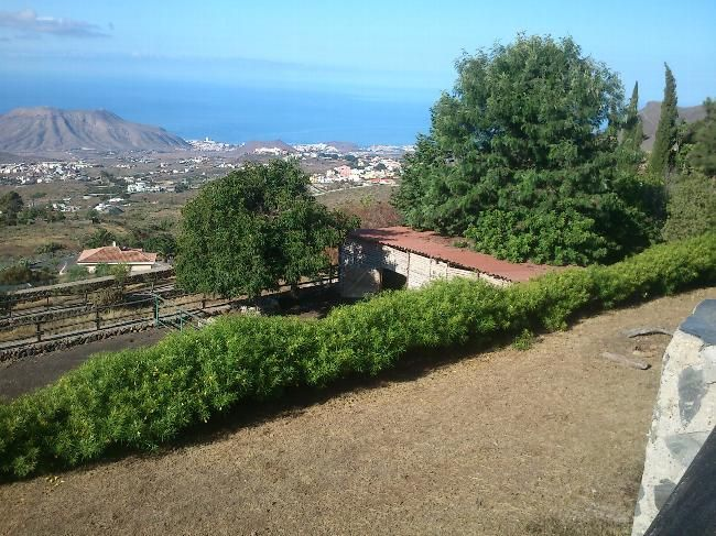 House Sitters Needed Feb 10, 2017 Medium Term Arona Tenerife Spain