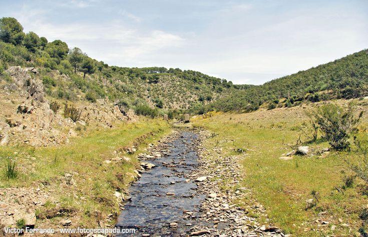 Cruzando el Pantano Gabriel y Galán http://www.fotoescapada.com/safari-fotografico-valle-del-ambroz-extremadura/