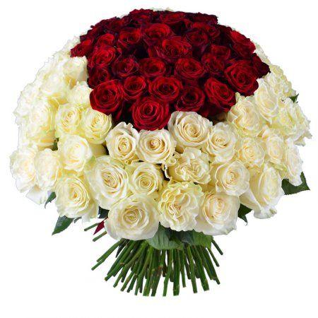 """Красно-белый букет роз - оригинальный цветочный подарок по любому поводу. Такая композиция подойдет в качестве презента и в День Рождение, и на свадьбу и по случаю предложения руки и сердца. Белые розы, как символ искренности, и красные, как символ пламенной любви, – лучшее сочетание в одном """"Королевском"""" букете"""