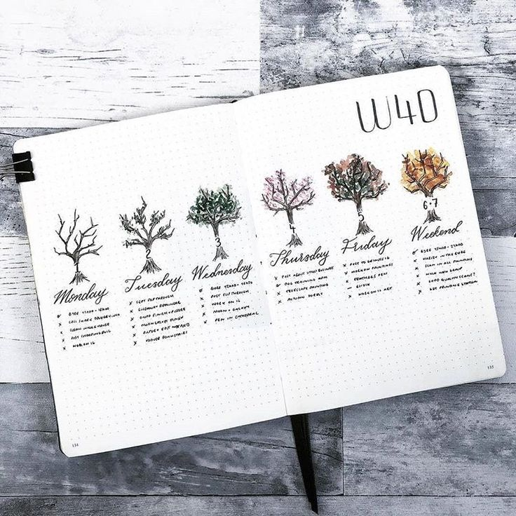 30 Amazing Bullet Journal Weekly Spreads You'll Want To Steal