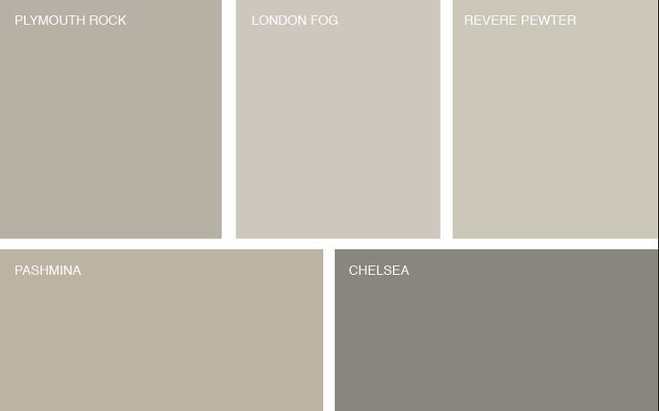 Image result for benjamin moore pashmina vs revere pewter