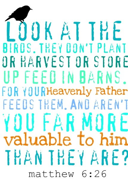 matthew 6:26 the verse going with the half sleeve.. Which is why I'm looking for bird and flower/tree tats!