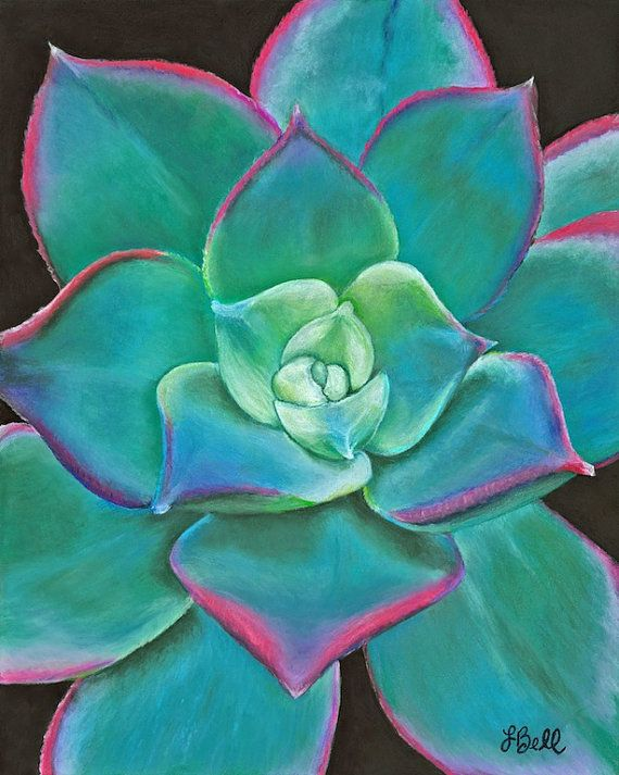 "Succulent Plant Art Original Pastel Drawing 8""x10"" Turquoise Art Beautiful pop of color"
