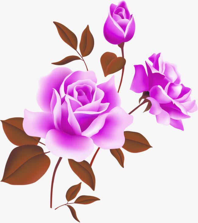 Hd Png Transparent Flower Hd Png Images Flower Hdpng Images Png Transpar Flower Hdpng Images P In 2020 Flower Clipart Rose Flower Png Flower Illustration